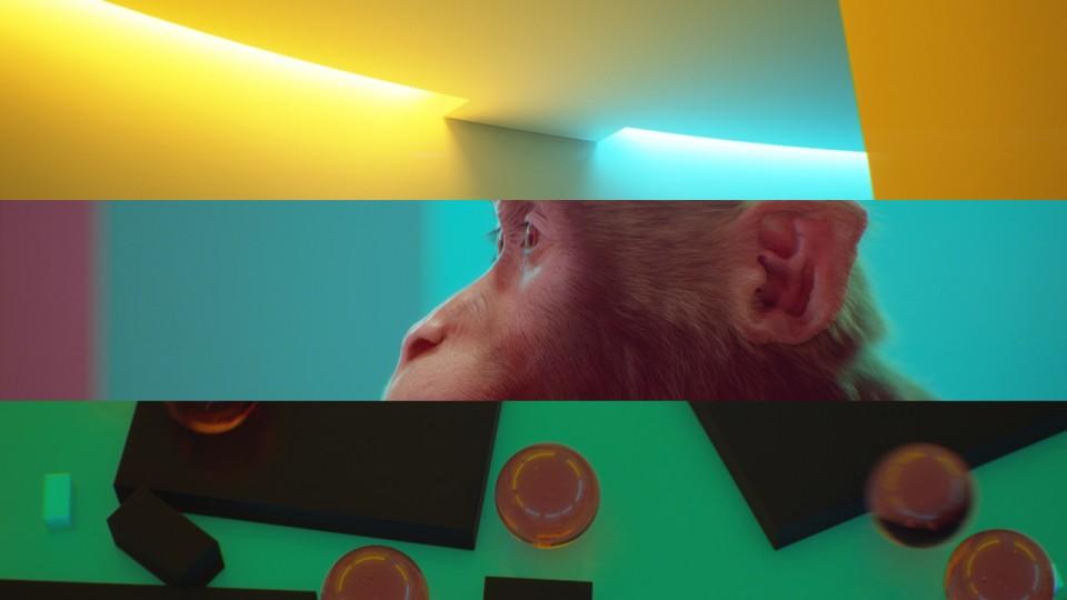 Bonpapa Light Motif | STASH MAGAZINE