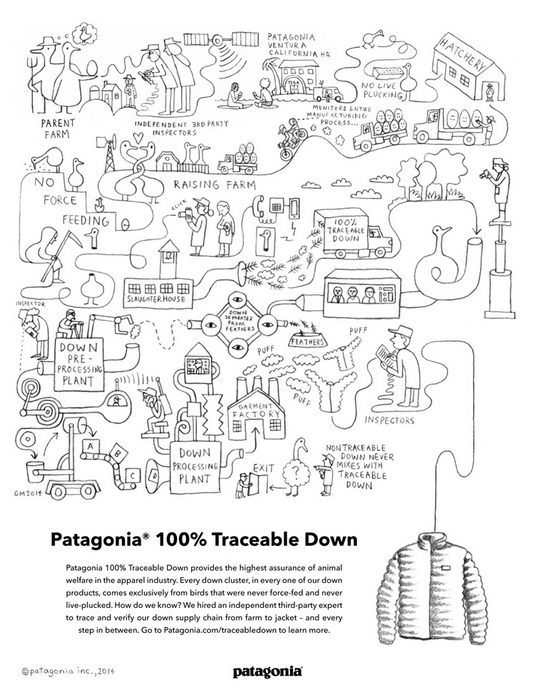 Champion Graphics Patagonia   STASH MAGAZINE