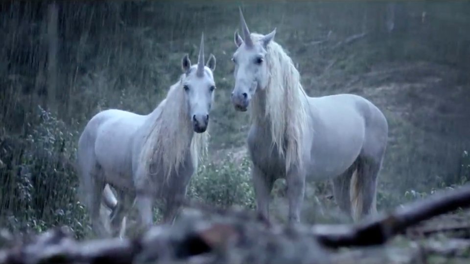 Mikros Canal+ Unicorns  STASH MAGAZINE
