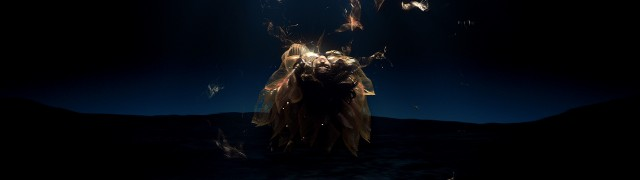bjork BLACK LAKE | STASH MAGAZINE