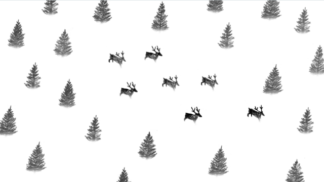 Santa Is a Psychedelic Mushroom New york timesMatthew Slaton New york times   STASH MAGAZINE