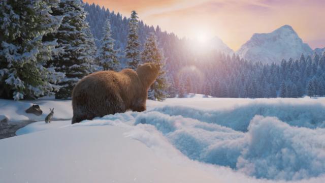SHED_LottoMax Bear | STASH MAGAZINE