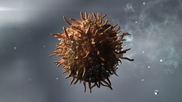 Heckler Australian Cancer Research Foundation animated TV spot | STASH MAGAZINE