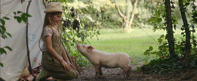 PETA Best Friend TV commercial Mackevision | STASH MAGAZINE