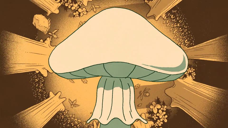 Life Up Close: Death-Cap Mushrooms The Atlantic Elyse Kelly | STASH MAGAZINE