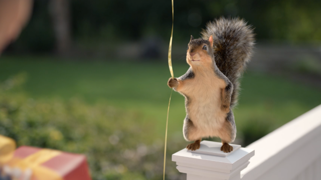 Squirrel-Sized Safety Tips by Ntropic