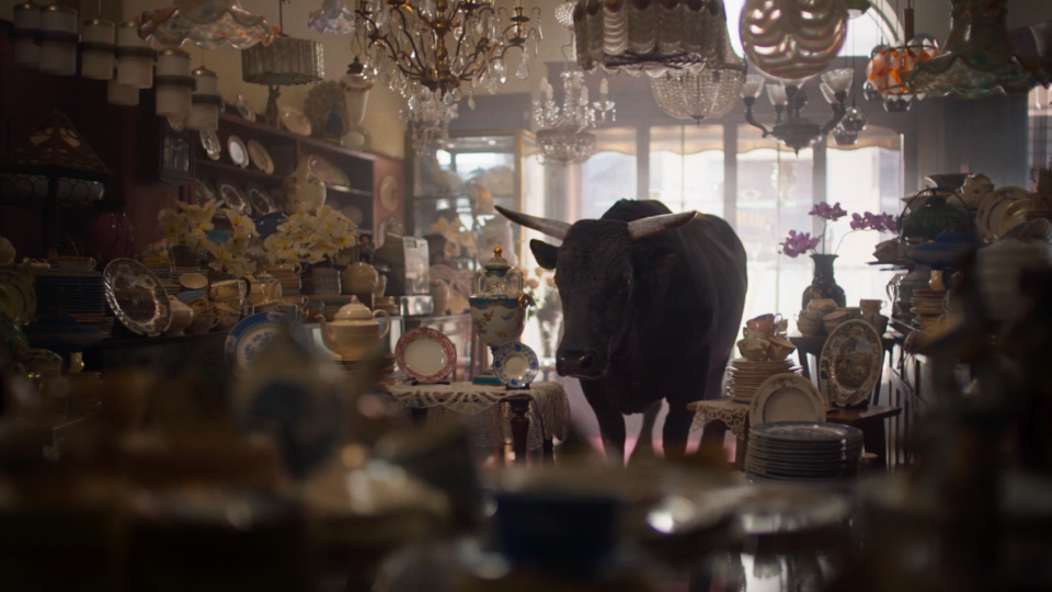Money Supermarket Money Calm Bull commercial | STASH MAGAZINE