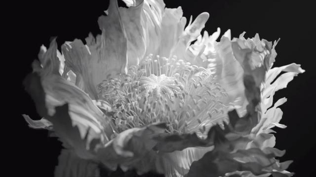 """M-Morris"" short film by Optical Arts | STASH MAGAZINE"