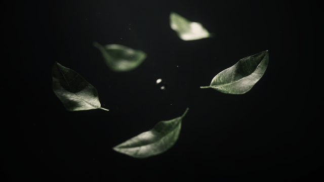 """""""Perseverance of the Frog"""" Short Film by Oh Yu Jun 