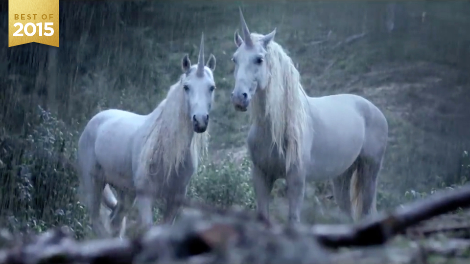 Canal+ Unicorns | STASH MAGAZINE