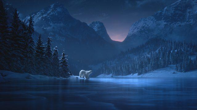 Polar Bears Bring