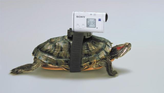 Mori Sony Action Cam | STASH MAGAZINE