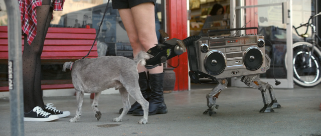Spotify Dallas Pets Alive | STASH MAAGZINE