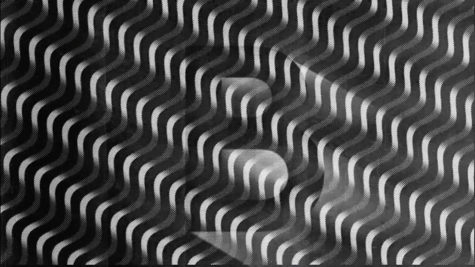 Lobo Leica | STASH MAGAZINE