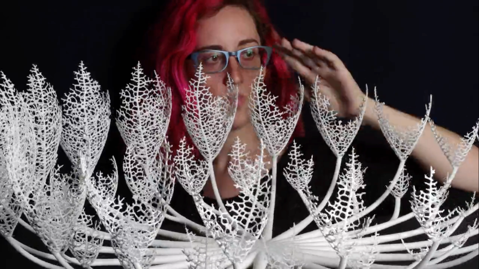 nervous system growing objects 3d printed zoetropes stash magazine