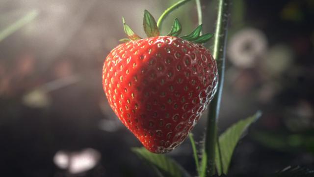 Beware the Great White Shark of Strawberries