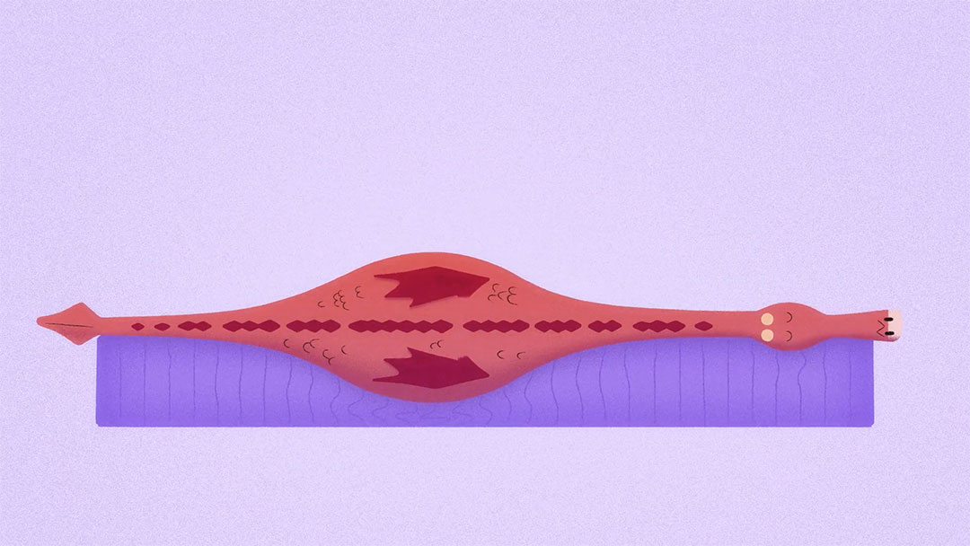 Purple Animals Parallel Studio   STASH MAGAZINE