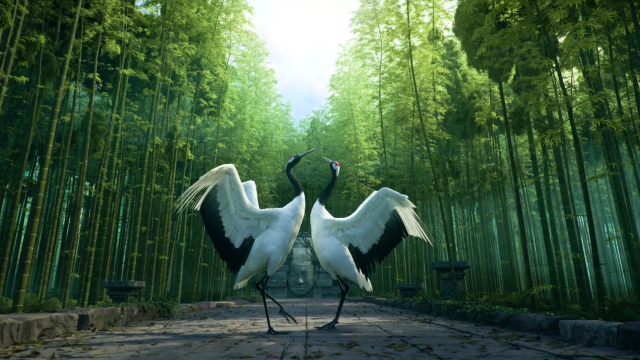Dancing with Cranes in a Bamboo Forest
