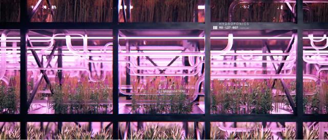 Pause Originals 'Instant' by InferStudio | STASH MAGAZINE