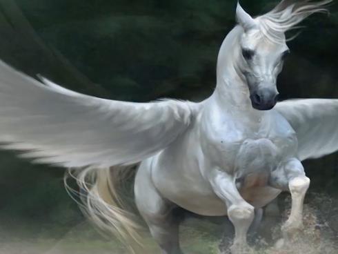 Imaginary Horses by Imaginary Forces | STASH MAGAZINE