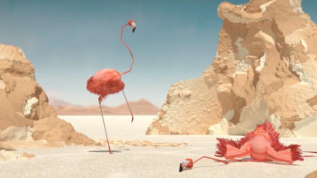 DVEIN vs Flamingos | STASH MAGAZINE