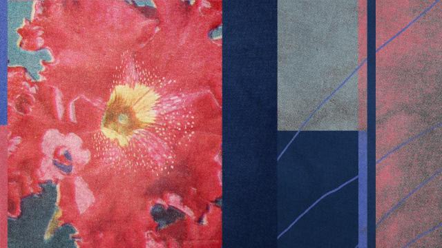 Bloom by Matt Smithson | STASH MAGAZINE