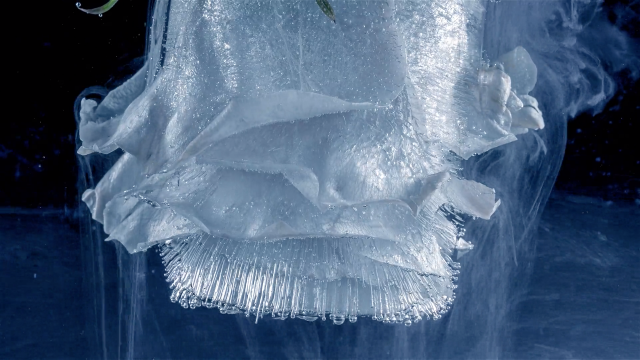 Black Ice short film by Christopher Dormoy | STASH MAGAZINE
