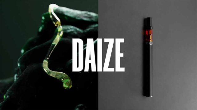 DAIZE Brand Mood Film by The Dink and Sebastian Helene | STASH MAGAZINE