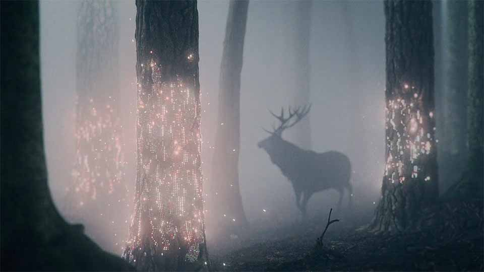 "Solita ""Fireflies"" by Brian Williams and Ntropic | STASH MAGAZINE"