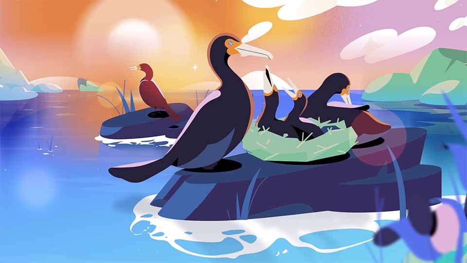 """Animal Alliance of Canada """"The Double-crested Cormorant"""" by Polyester Studio 
