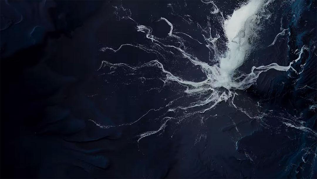 "Kinkajous ""Convolution"" Music Video by Marco Fontan   STASH MAGAZINE"