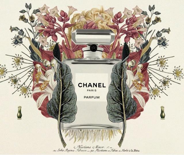 Chanel Self-Portrait of a Perfume | STASH MAGAZINE