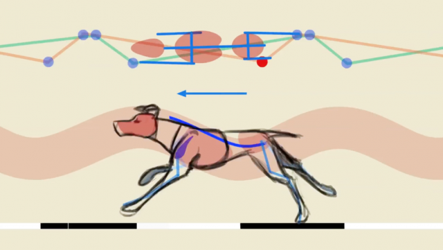 Felix Sputnik: the Secrets of Quadruped Locomotion