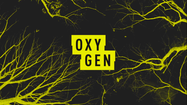 Rebranding Oxygen to All Crime All the Time