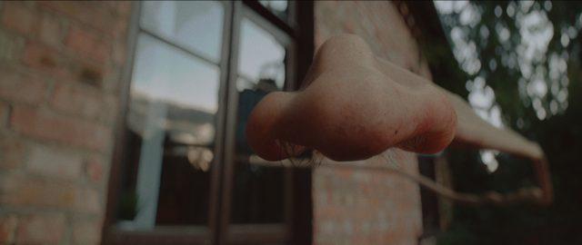 Beardyman 6am Ready to Write ft. Joe Rogan by Ian Pons Jewel | STASH MAGAZINE